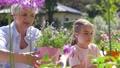 grandmother, granddaughter, flower 46062123