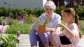 grandmother, granddaughter, flower 46062132
