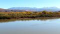 Grand Canyon Upstream Colorado River Autumn Yellow Leaves Utah 46092914