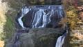 秋の袋田の滝 46157777