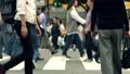 澀谷,爭奪路口,步行,步行,形象,觀光,擁擠,擁擠 46283473