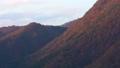 栃木県日光市 紅葉の山 土呂部 (11月) 左下から右上へパン ゆっくり 46308985