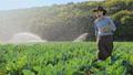 农业 农场 农民 46337139
