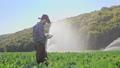 农业 农场 农民 46337142