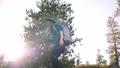 女性 フォトグラファー ハイキングの動画 46339525