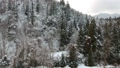 冬天秋田縣鳥瞰圖落在山森林的雪 46384684