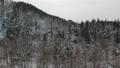 มุมมองทางอากาศภูเขากลับฤดูหนาวป่าหิมะฉากจังหวัดอะกิตะ 46385037