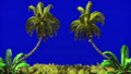 The branches of palm tree and Tropical plant in the wind on blue screen. Beautiful summer looped 46414654