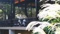 中間女性餐館多士旅行圖像 46415681