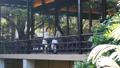 中間女性餐館多士旅行圖像 46415684