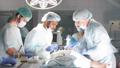 病院 メディカル 医療の動画 46435166
