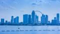 Singapore Cityscape Time Lapse 46463904