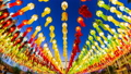 Colorful Day to Night Many Lanterns Of Thailand 46464596