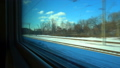 FullHD Point of view from the window of a passenger train. The deserted winter forest moves outside 46481937
