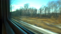 FullHD Point of view from the window of a passenger train. The deserted winter forest moves outside 46481950