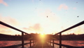 The camera flies over a wooden bridge on a tropical island with an exotic white beach on sunset 46487090