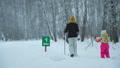 ウィンター 冬 おかあさんの動画 46500872