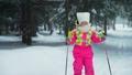 ウィンター 冬 スキーの動画 46500909