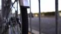 自行車和道路 46561403