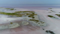 Majestic saline soil of seashore 46674474