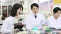 實驗室開發實驗室臨床檢驗生物技術新藥 46697762