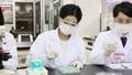 實驗室開發實驗室臨床檢驗生物技術新藥 46697810