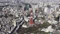 空中東京直升機東京鐵塔 46697818