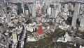 空中東京直升機東京鐵塔 46697821