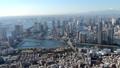 空撮 東京 ヘリ 46697924