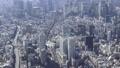 空撮 東京 ヘリ 46697926