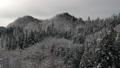 มุมมองทางอากาศป่าภูเขาหิมะอาคิตะ 46786340