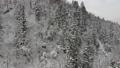 มุมมองทางอากาศ Akita ภูมิทัศน์ฤดูหนาวป่าภูเขาหิมะ 46786522