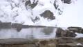 온천의 입욕을 많이 좋아지고 쿠 다니 야생 원숭이 公苑의 원숭이 (snow monkey) 46832858