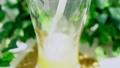 ビールをグラスに注ぐ 47170980