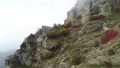 霧 景色 風景 47189201