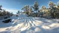 Winter Scandinavian landscape. 47218857