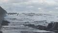 Waves breaking on concrete breakwaters. Sea storm. 47220944