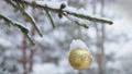 Christmas ball hanging on the Christmas tree 47224132