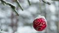 Christmas ball hanging on the Christmas tree 47224232