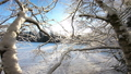 Winter Scandinavian landscape. 47231699