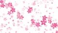 樱花背景水彩样式 47289306