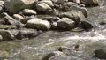 Mountain River in Sunny Weather. Slow Motion 47331669