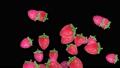 草莓出現 47344937