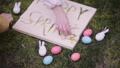 decoration for Easter. Easter bunnyes 47650493