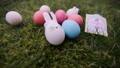 decoration for Easter. Easter bunnyes 47650502