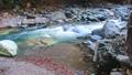แม่น้ำคาชู 47651711
