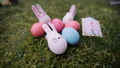 decoration for Easter. Easter bunnyes 47658507
