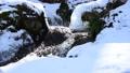 清流 水 雪解け 水資源 47666872