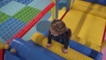 Little girl climbing on stairs in children's play center 47695433