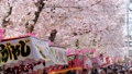 満開の桜並木と屋台と花見客 岩倉桜まつり フィックス 47718367